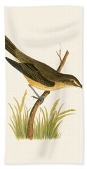 Marsh Warbler Hand Towel by English School