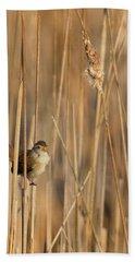 Marsh Wren Hand Towel by Bill Wakeley