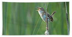 Marsh Wren Bath Towel