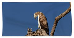 Martial Eagle Hand Towel