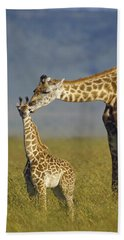 Masai Giraffe Mother And Young Kenya Hand Towel