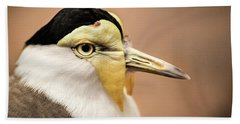 Masked Lapwing Hand Towel by Don Johnson