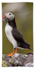 May Puffin Hand Towel