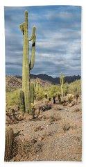 Mcdowell Cactus Hand Towel
