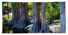 Mckinney Falls State Park - Texas 12118-2 Bath Towel