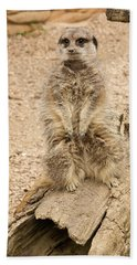 Hand Towel featuring the photograph Meerkat by Chris Boulton