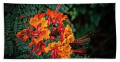 Mexican Bird Of Paradise Bath Towel by Robert Bales