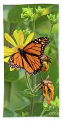 Mighty Monarch   Hand Towel