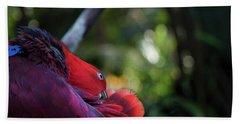 Miksang 4 Parrot Hand Towel by Theresa Tahara