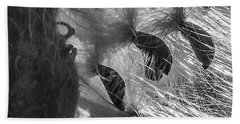 Milkweed Sunburst In Black And White Hand Towel
