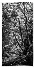 Hand Towel featuring the photograph Missisquoi River In Vermont - 1 Bw by James Aiken