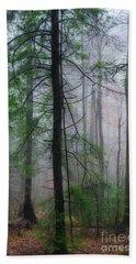 Misty Winter Forest Bath Towel by Thomas R Fletcher