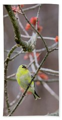 Hand Towel featuring the photograph Molting Gold Finch by Bill Wakeley