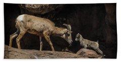 Bath Towel featuring the photograph Mom N Baby Desert Big Horn Sheep by Elaine Malott