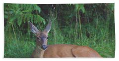 Mom Watching Her Fawn Bath Towel by Ansel Price
