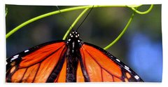 Hand Towel featuring the photograph Monarch Butterfly by Laurel Talabere