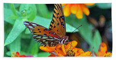 Monarch Butterfly Resting Hand Towel
