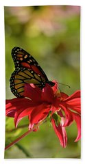 Monarch On Red Zinnia Hand Towel