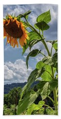 Monticello Sunflower Bath Towel
