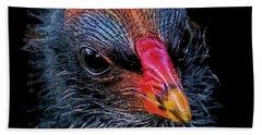 Moorhen Chick Hand Towel