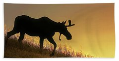 Hand Towel featuring the photograph Moose Evening Wander by Jennie Marie Schell