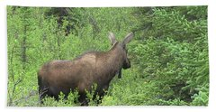 Moose Hand Towel