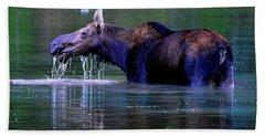 Moose In Swiftcurrent Lake, Glacier National Park Hand Towel