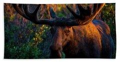 Moose Sunrise Bath Towel