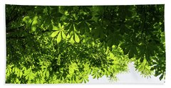 More Than Fifty Shades Of Green - Sunlit Chestnut Leaves Patterns - Down Bath Towel