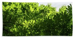 More Than Fifty Shades Of Green - Sunlit Chestnut Leaves Patterns - Up Bath Towel