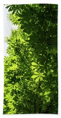 More Than Fifty Shades Of Green - Sunlit Chestnut Leaves Patterns - Vertical Right One Bath Towel