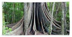Moreton Bay Fig Tree Hand Towel