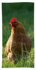 Morning Chicken Hand Towel