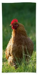 Morning Chicken Bath Towel