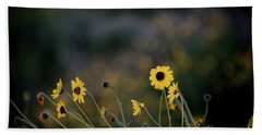 Morning Light Hand Towel by Kelly Wade