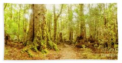 Mossy Forest Trails Hand Towel