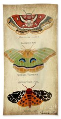 Moth Study Bath Towel