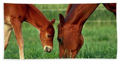 Mother And Foal 3377 H_2 Hand Towel