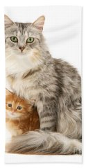 Mother Cat And Ginger Kitten Bath Towel