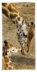 Mother Giraffe With Her Baby Hand Towel