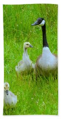 Hand Towel featuring the photograph Mother Goose by Sean Griffin