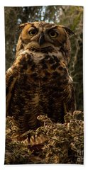 Mother Owl Posing Bath Towel by Jane Axman