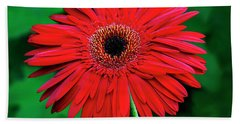 Mother's Day Gerbera Daisy Bath Towel