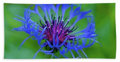 Mountain Cornflower Bath Towel