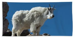 Bath Towel featuring the photograph Mountain Goat 2 by Gary Lengyel