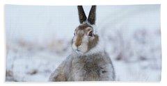 Mountain Hare - Scotland Hand Towel