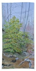 Mountain In Fall Hand Towel by Christine Lathrop