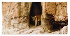 Mountain Lion In The Desert Bath Towel