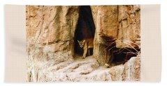 Mountain Lion In The Desert Bath Towel