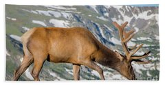 Mountain Top Elk Bath Towel